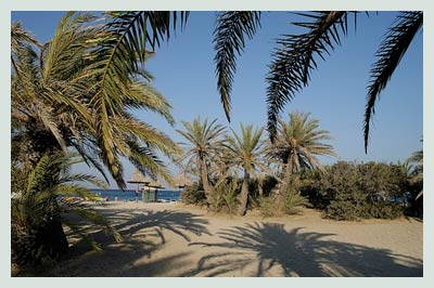 Car Rental Chania, Vai Beach